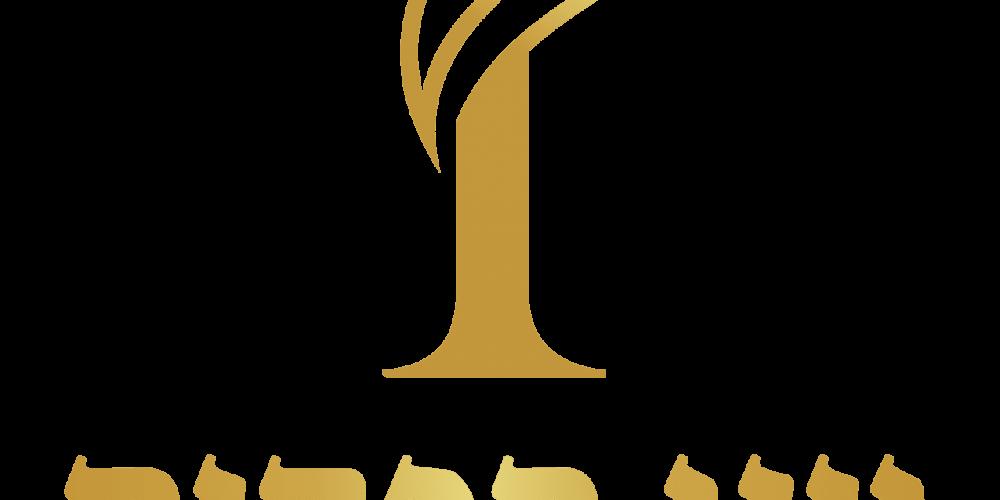 לוגו יוני הפקות איכותי-01