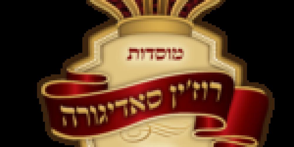 לוגו סדיגורה שקוף